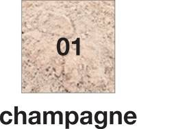 1 Champagne